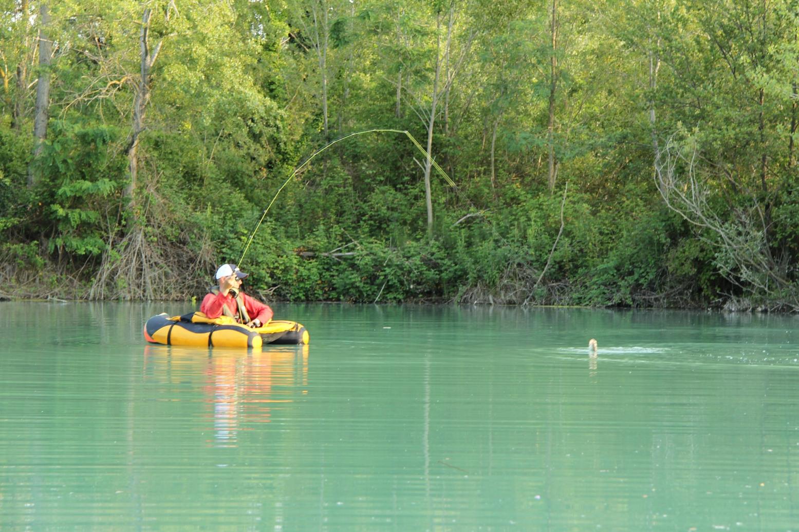 Scaricare attraverso un torrente un gioco la pesca reale