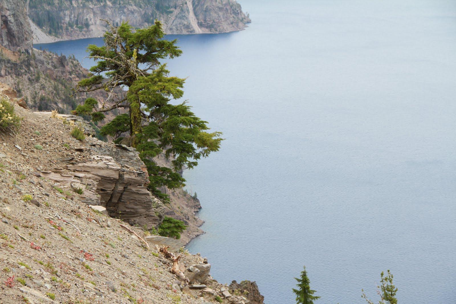 Crater Lake National Park 10 000 Windows