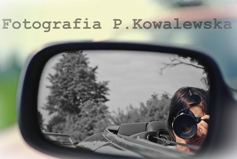Fotografia P. Kowalewska