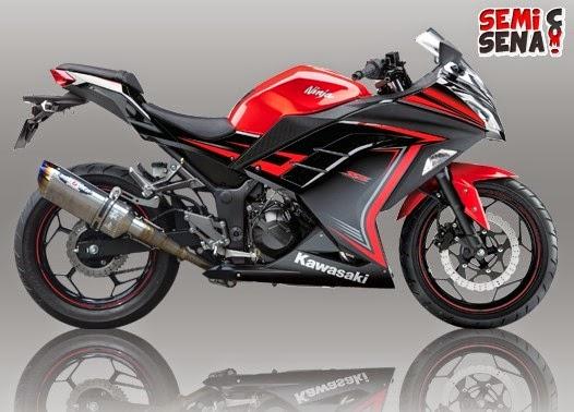 Kawasaki-ninja-250-nassert-bert