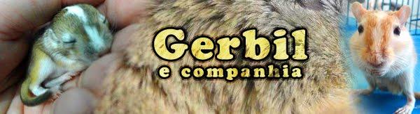 Gerbil e Companhia