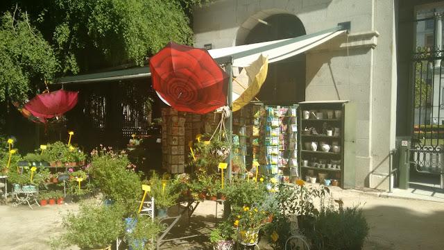 jardin botanico de madrid