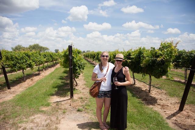 Wine Tasting Texas