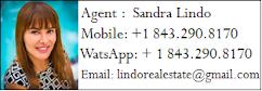 Sandra Lindo Agent