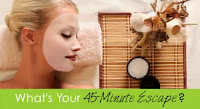 Feb2011 FacialApplicator Header Mothers Day Giveaway Extravaganza