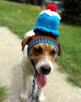 HANDMADE HATS FOR PETS