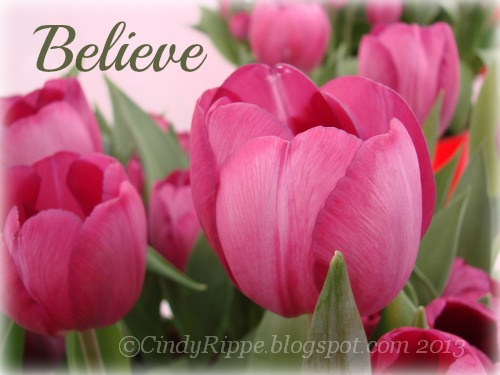 #Pink tulips, #believing in your plans, #Mark 5:36, #have faith, #Florals-Family-Faith, #CindyRippe