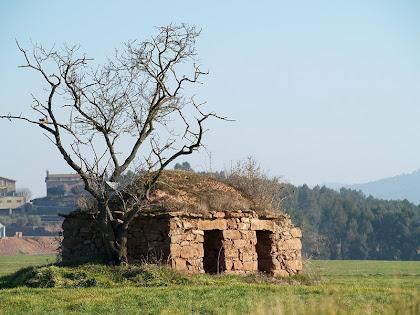La barraca de vinya dels Plans de Santa Anna amb el veïnat de Sant Ponç al fons