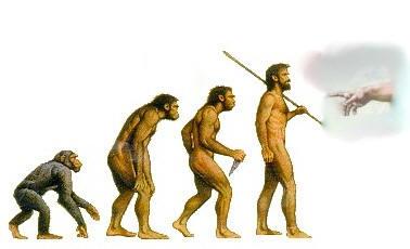 One Witch's Wonderland: Theistic Evolution