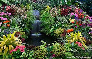 -betul taman yang paling indah di dunia. Jika di dunia saja ada taman ...