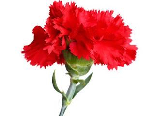 Травневі привітання. Вітання до дня Перемоги. Привітання 1 травня, 9 травня.