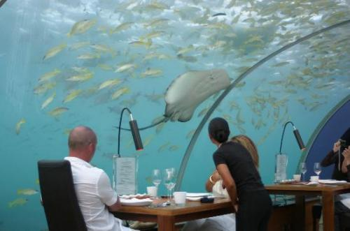 World's First All-glass Undersea Restaurant
