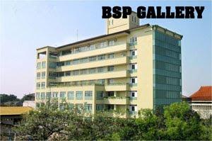 BSP GALLERY