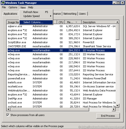 multiple w3wp.exe task manager