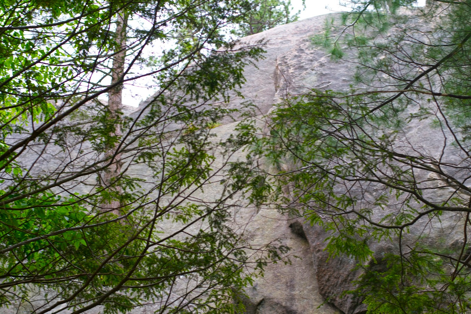 Looking up towards the top, one of the rock ridges.