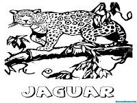 Mewarnai Gambar Binatang Jaguar Berjalan Di Dahan Pohon