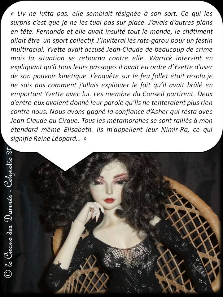 AB Story, Cirque:T24 ep7 p 51/E8 p 52/+E9 p 52 - Page 3 Diapositive53
