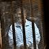 شاهد بـ«قضية هروب النطرون»: قيادات الجماعة دخلوا سجن وادي النطرون بدون أورق أو قرارات اعتقال