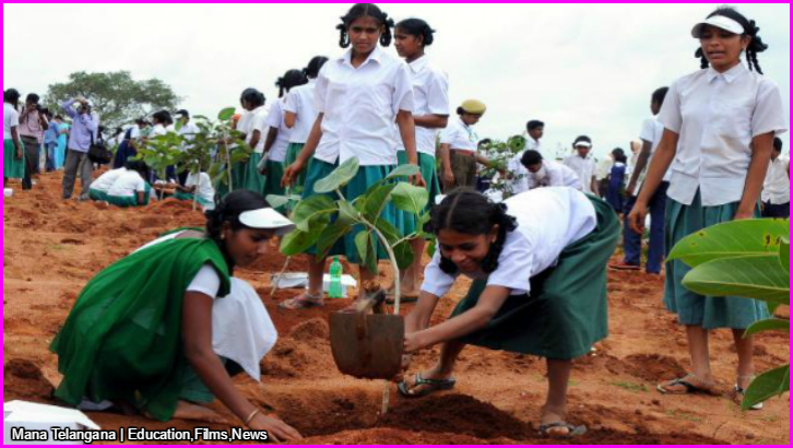 Haritha Haram largest green drive in India