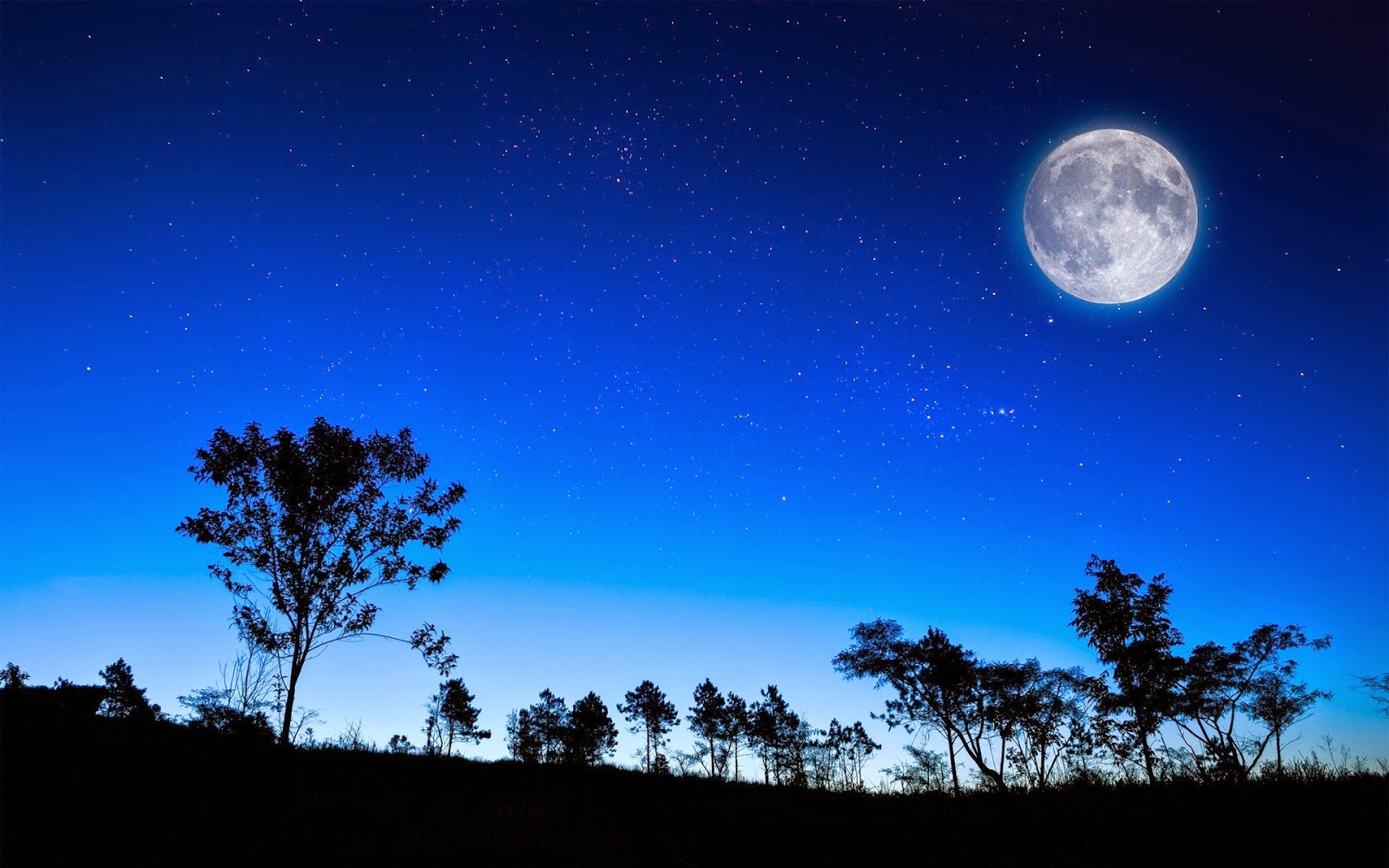 معجزة الليل