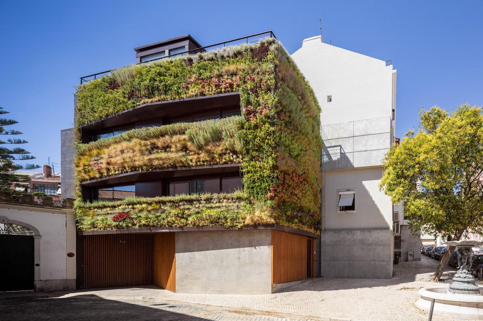 Mis cosas jardin casa for Jardines verticales introduccion