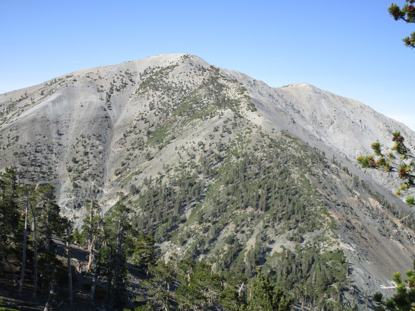 singles in mt baldy San bernardino mountains & favorite views:  mt baldy resort best viewing:  mountain singles operation provider in rim forest.