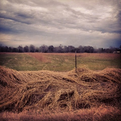 Prairie mood