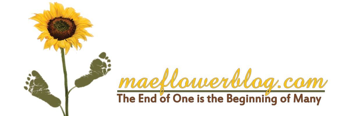 Maeflower Blog