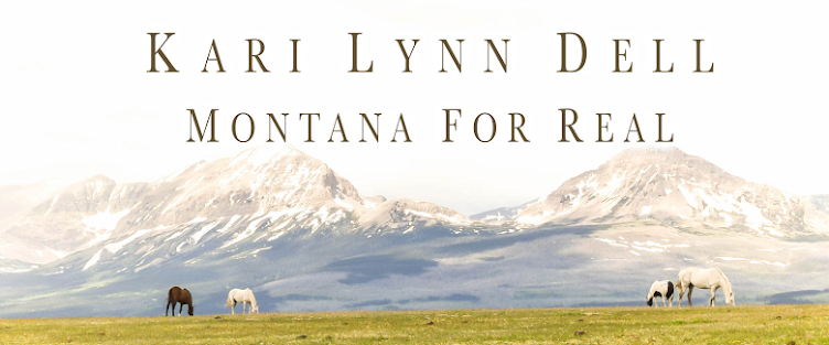 Kari Lynn Dell - Western Author
