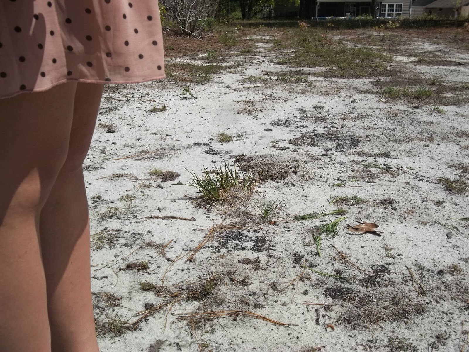 Blush and Chocolate Brown + A Surprise! Blush and chocolate brown polka dot dress, gold jewelry, white sandals. http://mybowsandclothes.blogspot.com/. #outfit #BowsandClothes #capsulewardrobe #surprise #blush