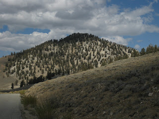 White Mountain, near the Schulman Grove Visitor Center, Ancient Bristlecone Pine Forest, Eastern Sierras, California
