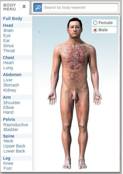 La caja de mil colores: El cuerpo Humano y la salud