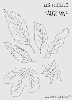 Coloriage à imprimer feuilles automne