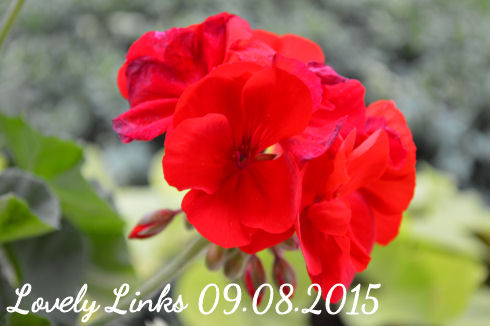 Lovely Links 09.08.2015   seriously-lovely.blogspot.com