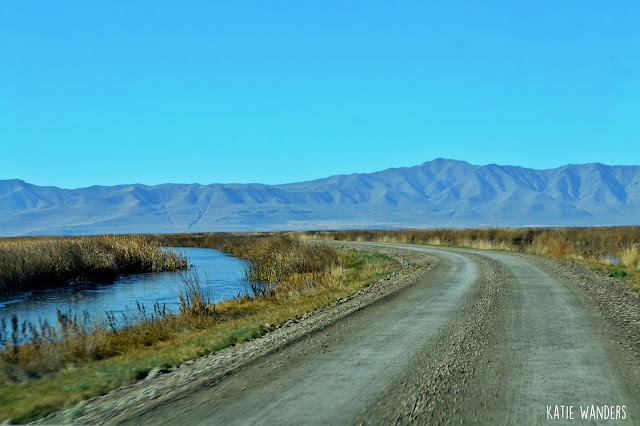 Dirt Road, start of the Auto Tour Bear River Migratory Bird Refuge