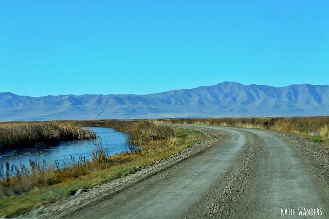 Dirt Road, start of the Auto Tour Bear River Migratory Bird Refuge