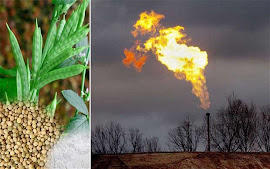 Guar Gum Used In Fracking