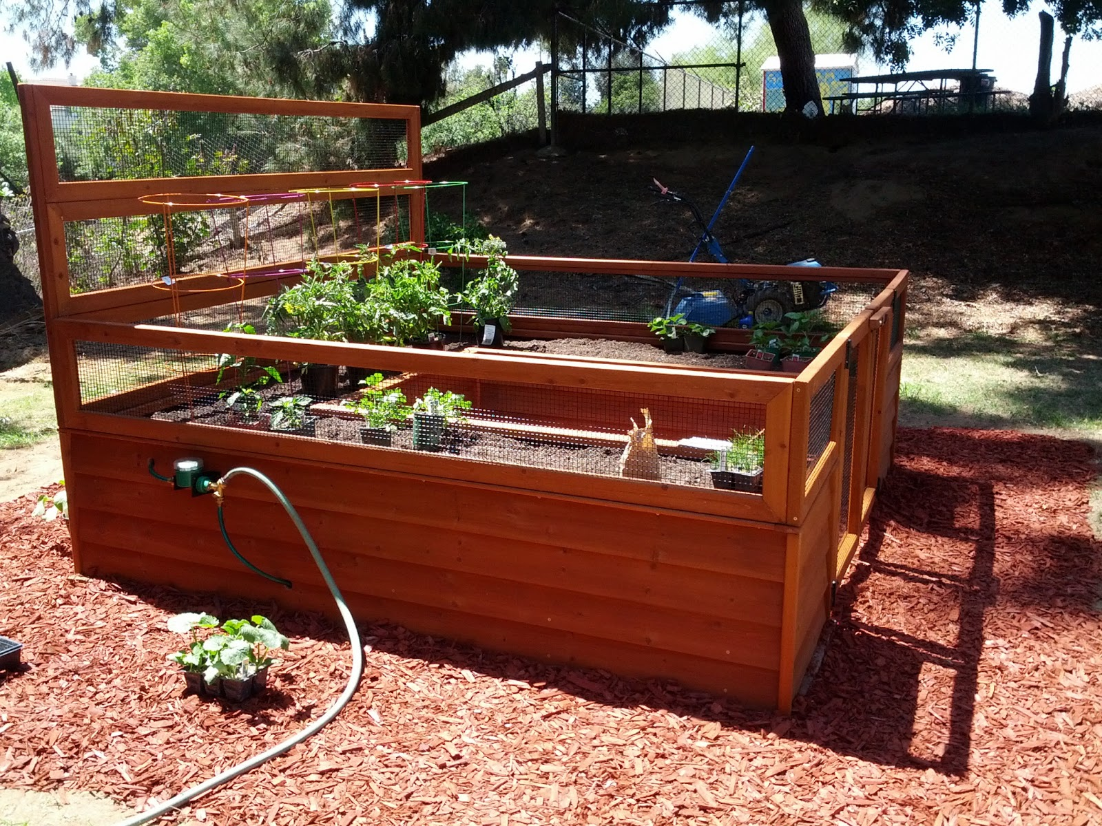 Angee Bee\'s: Backyard Botanical Complete Gardening System Detailed ...