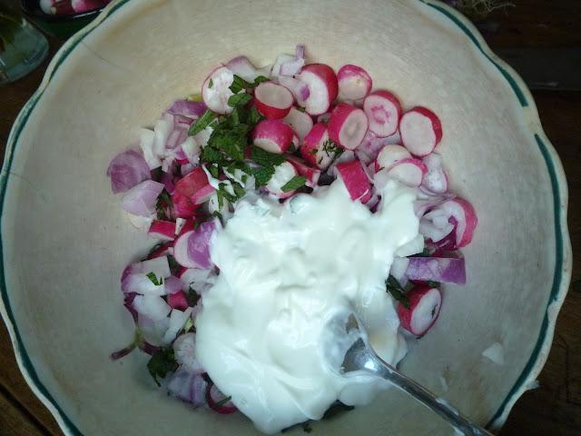 oignon-radis-en-rondelles-menthe-yaourt