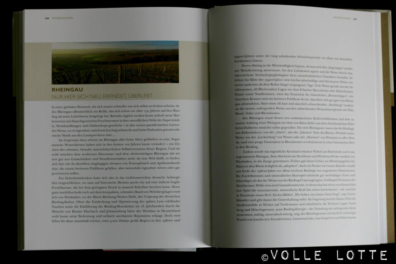 Wein, Stuart Pigott, Deutschland, Winzer, Weinanbaugebiet