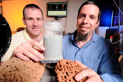 Georgia Tech researchers (l-r) Daniel Goldman and Michael Goodisman pose with a tube containing simulated soil used to study tunnels being made by fire ants. They are holding examples of nests made by the ants in the wild. The information could be useful in developing future generations of robots able to work in confined spaces. Credit: Gary Meek