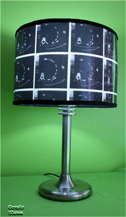 Condo blues how to make an x ray lampshade i made this lampshade for lamps and their very first diy blogger lampshade challenge because i am always looking for ways to reward you for sticking aloadofball Gallery