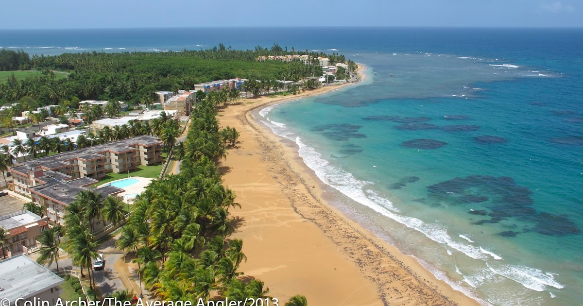 The average angler perfect vacation in for Fly fishing puerto rico