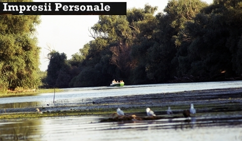 excursie-pe-canale-in-delta-dunarii-impresii-sentimente