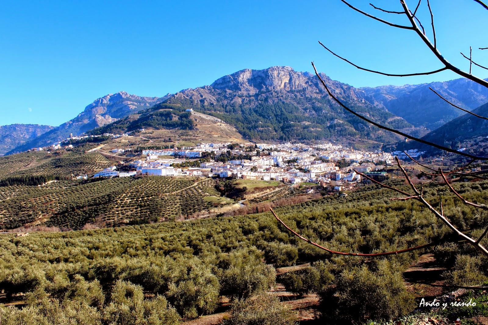 Mares de olivos en Cazorla