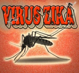 Fakta Penting Di Balik Virus Zika Berdasarkan Laporan WHO