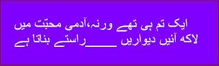 2 Lines Urdu Poetry zeal and zest