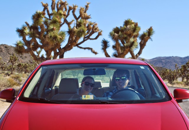 An afternoon in Joshua Tree National Park, California | Em Then Now When