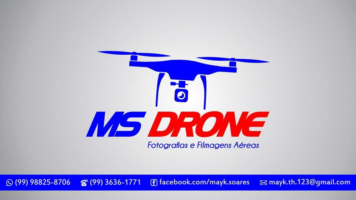 MS Drone