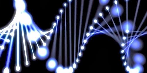 A 3D DNA Strain